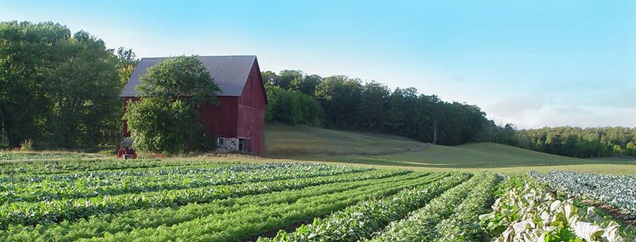 Second Spring Farm Organic Farming In Northern Michigan